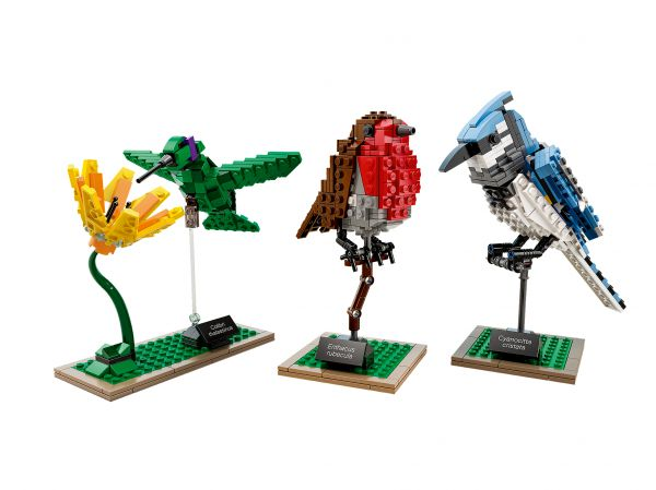 Lego 21301 Ideas Birds